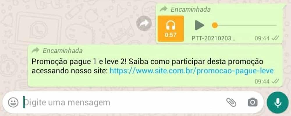 Print do WhatsApp, áudio de promoção.